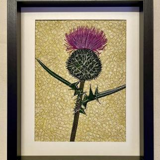 Thistle in the Barley