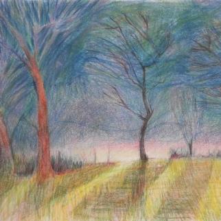 Landscape - Corner of Field  - Coloured pencil 30x42cm(framed 40x52cm aprox