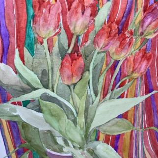 Tulips and strips