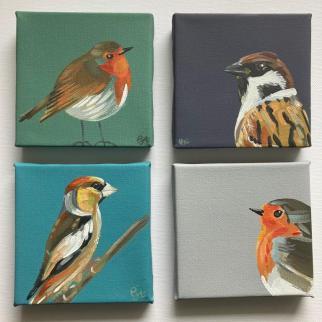 Robin Tree Sparrow Hawfinch acrylic on canvas pjtopleyart