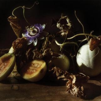 LeraGrant_Fineartphoto_MelonPassionflowers