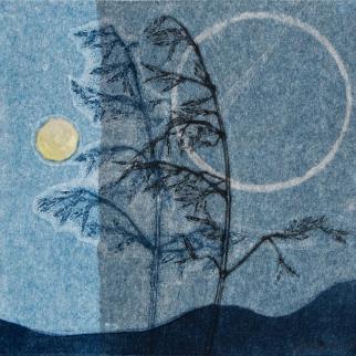 Summer Grasses, monoprint on Japanese paper