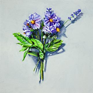 Painting by Kirsty Lorenz depicting a flower posy of potatoe and lavender