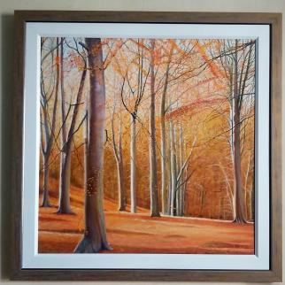 Bright orange autumnal light of beech trees in the sunlight