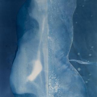 cyanotype made at the seashore