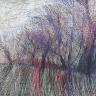 Landscape - Trees, Edge of Field - Coloured Pencil and Biro