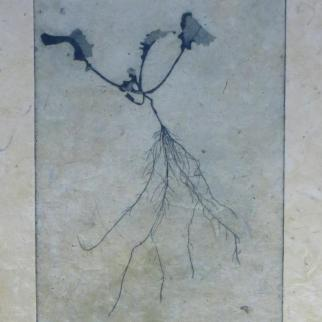 Etching on handmade paper