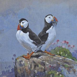 Puffins gouache on linen