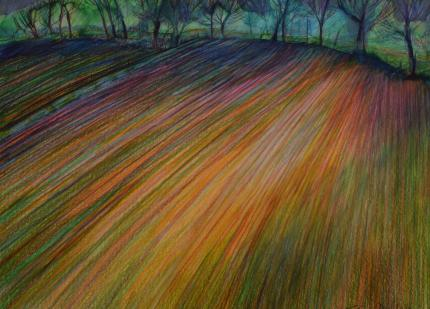 Landscape - Ploughed Field - Coloured pencil and ink - 28x40cm
